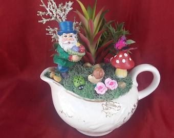 Mini Garden Terrarium with Teacup Leprechaun and Air Plant~Collectible item~Handmade~Not a Kit