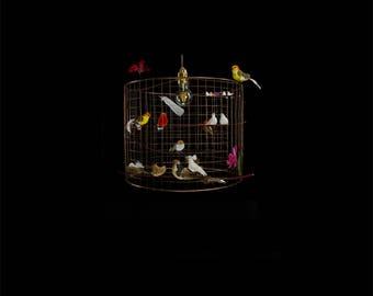 Birdcage copper-hanging lamp copper-with birds-kitchen-children's room-games room-baby room-Ø 50 cm-Voliere-By Olivier & Sofie-Natural variation