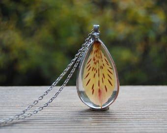 Pressed flower necklace, terrarium necklace, tiger lily necklace,real flower necklace, botanical jewelry,terrarium pendant,teardrop necklace