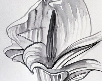 Calla Flower illustration - Black and white flower - black and white painting - Ink drawing - Flower black drawing