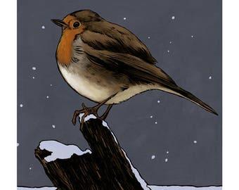 Robin colour art print
