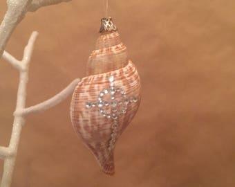 Shell ornament Cross