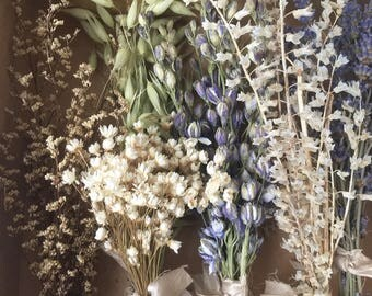 Mixed Mini Dried Flower Bunches / Natural Dried Flower Sampler: Bloomery Blend 0004