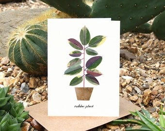 RUBBER PLANT - Greeting Card with Plant Care, Plant Card, Ficus Elastica, Plant Lover Card, Botanical Card, House Plant Card