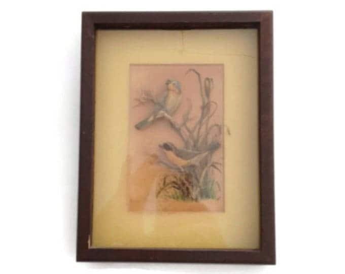 CLEARANCE Framed Art Work, Vintage Wall Decor, Bird Lover Gift, Yellow-Throats Artwork, Helen Fleming Artwork