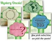 Mystery Onesie! Final Sale! Organic Baby Clothes, Cute Baby Outfit, Cute Organic Onesie, Organic One Piece, Baby Bodysuit, Baby onesie Sale