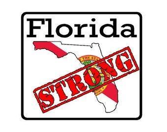 Florida State (K1) Strong Vinyl Decal Sticker Car/Truck Laptop/Netbook Window