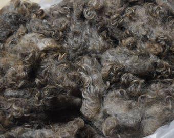 Efa, Gotland Raw Wool Fleece