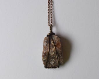Turritella Agate Necklace
