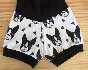 Dog shorts, black and white Boston terrier shorties, boy shorts, girl shorts, baby shorts, dog lovers, baby's best friend shorts, organic