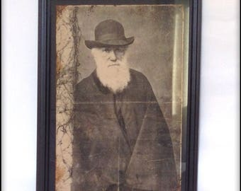 Aged reproduction Charles Darwin print in frame.