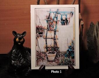 Artistic Card Set / Adobe Wall w/ Latilla Trellis
