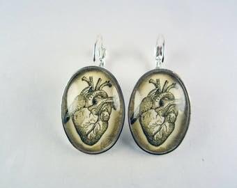 Anatomical heart drop earrings