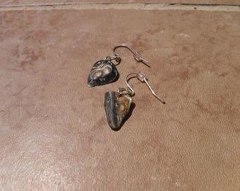 Sea Shell Drop Earrings