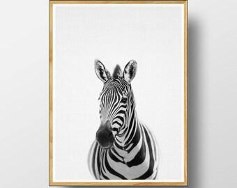 Zebra Print, Nursery Animal Print, Nursery Animals, Nursery Art Print, Zebra, Nursery Animal Art, Nursery Animal Decor, Zebra Wall Art