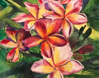 Plumeria flower watercolor