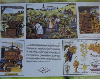 Wall decoration, 42 x 30 + or - cm, creating poster school placemat Nightingale harvest Burgundy Bordeaux treading A3 size.