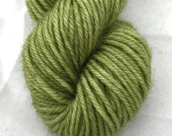 Earth Lime - BFL 4 Ply Mini