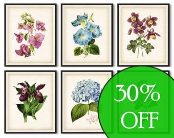 Botanical print, Floral print set, Printable set, Wall art decor, Flower art print, Set of 6 prints vintage, Instant print, 8x10 art, 11x14