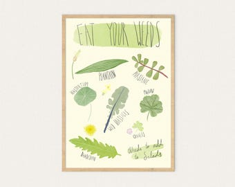 Eat your weeds! A3 & A4, Poster, Survival, Wild, Forage, Super, Food