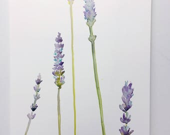 Lavender Sprigs, Lavender Art, Floral Art Print, Botanical Watercolors by Ochre Nest