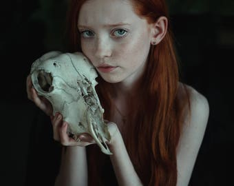 Girl with a Skull
