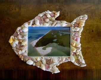 Seashell Fish Frame,5 x 7 frame,seashell frame,5 x 7 seashell picture frame,fish picture,seashell art, seashells,frame,seashells,fisherman's