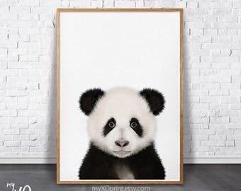 Panda Print, Panda Bear, Printable Nursery Animal, Baby Room Decor, Panda Photo, Photography, Kids Room Wall Art, Safari Animal Poster, DIY