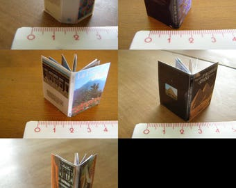 your choice of miniature book, dictionary, atlas, the France, pyramids, furniture