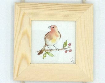 Three little Robin watercolor paintings