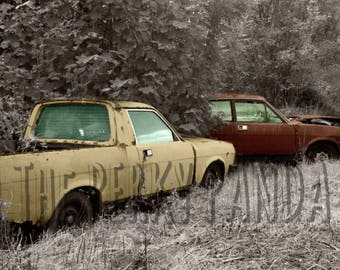 Rustic photo print, retro, colourised, old car, nature, overgrown, forgotten cars, abandoned cars