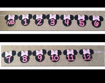 Minnie Mouse 12 Month Photo Banner