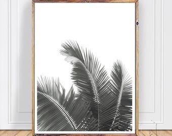Palm Print, Leaves , printable ,Palm, Wall Art ,Leaf Print, Palm Leaf Print ,Tropical Wall Art ,Large Poster ,Leaf Art ,Palm Art ,JPEG ,PDF