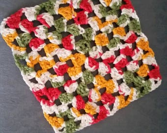 Sturdy dish cloth