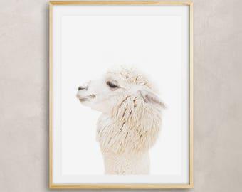 Alpaca Print, Baby Alpaca Wall Art, Nursery Animal, Woodlands Nursery Decor, Alpaca Printable Poster, Alpaca Digital Print Digital Download