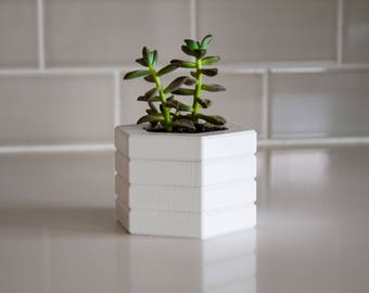 planter, succulent planter, plastic planter, small planter, cacti planter, 360Five planter