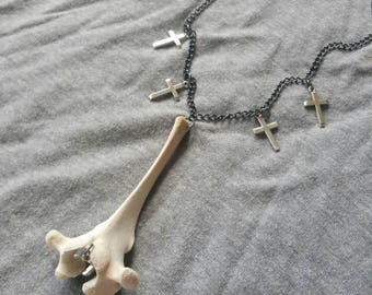 Thoracic Cow Vertebrae and Cross Necklace