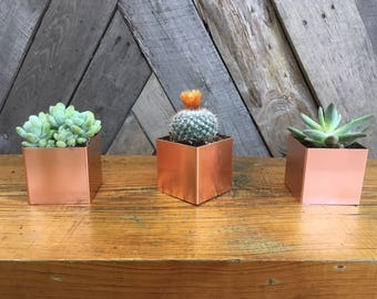 Copper Planter Box
