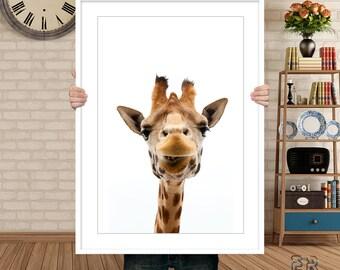 Giraffe Print, Giraffe Wall Art, Nursery Decor, African Animal, Animal Print, Giraffe Photo Large Poster, Kids Room Print, Animal Wall Print