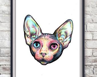 Sphynx Cat Illustration - Kitten, Kitty, Drawing, Poster, Print, Hairless Cat, Cute, Pet