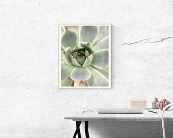 Pastel Print Flower-Printable Pastel-Cactus Wall Decor-Cactus Home Decor-Cactus Decoration-Greenery Decor-Monochrome Decor-Cacti Art Print