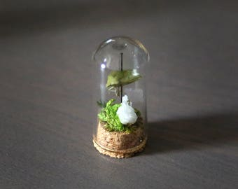 Green Stinkbug Miniature Curiosity Dome Small