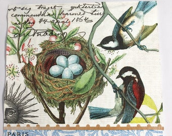 "NEW - Bird's Nest Napkins, 6.5""x6.5"""