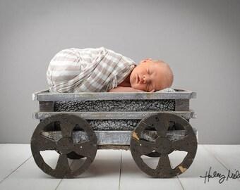 Newborn Boy Digital Backdrop/Background Rustic Gray Wagon/Cart Photography Prop Instant Download