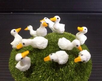 5 Tiny White Duck Picks 2 Design Miniature Dollhouse FAIRY GARDEN Accessories