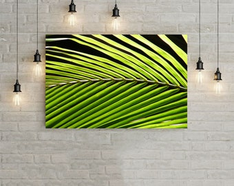 Palm Leaf, Photography, Instant Download, Printable Wall Art, Digital Download Art, Palmtree