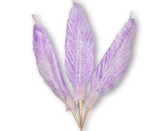 Feather Candles - Candelina's  (Set of 3)
