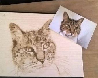 Pet portrait ~ pyrography art ~ personalised pet photo