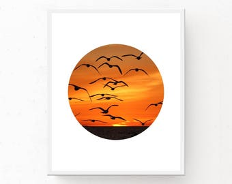 OCEAN SUNSET PHOTO, Sunset Seagulls Print, Printable Art, Flying Seagulls Print, Digital Download, Sunset Photo, Ocean Photography, Seagulls
