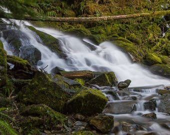 Waterfall over path